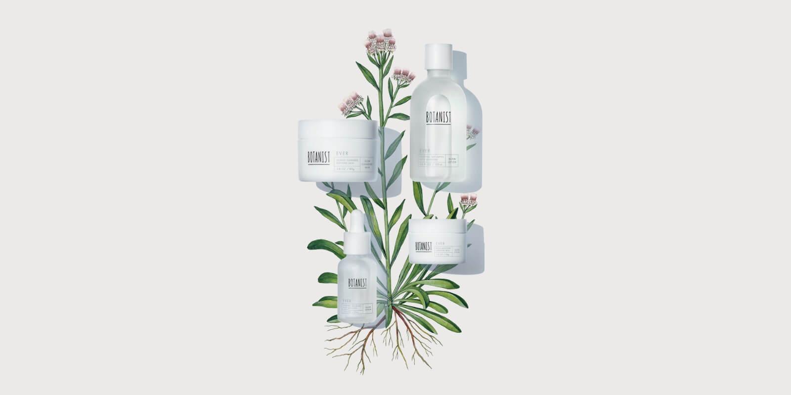 植物の生命力を。肌へ。
