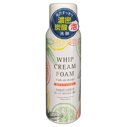 Dense Foaming Face Wash / JAPAN GALS