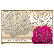 Cover Fit Pact UV II / COFFRET D'OR Gran
