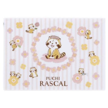 OTONA JOSHI BIYORY Oil-Absorbing Sheets with Case / OTONA JOSHI BIYORY