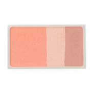 Cheek Color Mix Type / MUJI