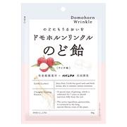 ドモホルンリンクル のど飴【2個セット】! / ドモホルンリンクル